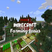 Minecraft Farming Basics